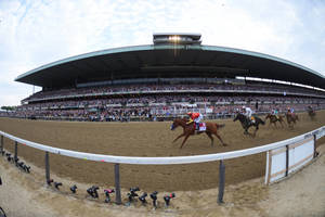 Carousel_image_a66401331f446f217167_justify_the_belmont_stakes_adam_coglianese3
