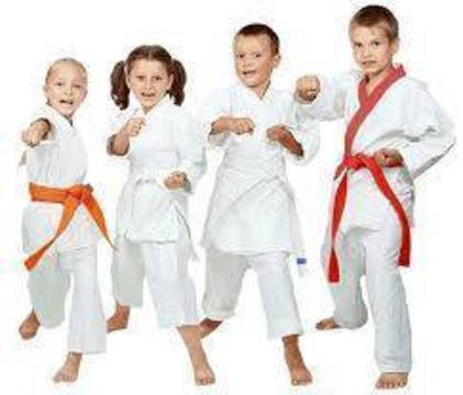 Top story 476042e942971c3d2798 karate freepngimg