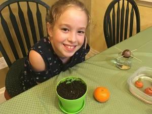 Carousel image 7f24f00805dd1b9cb0ad kids gardening high res