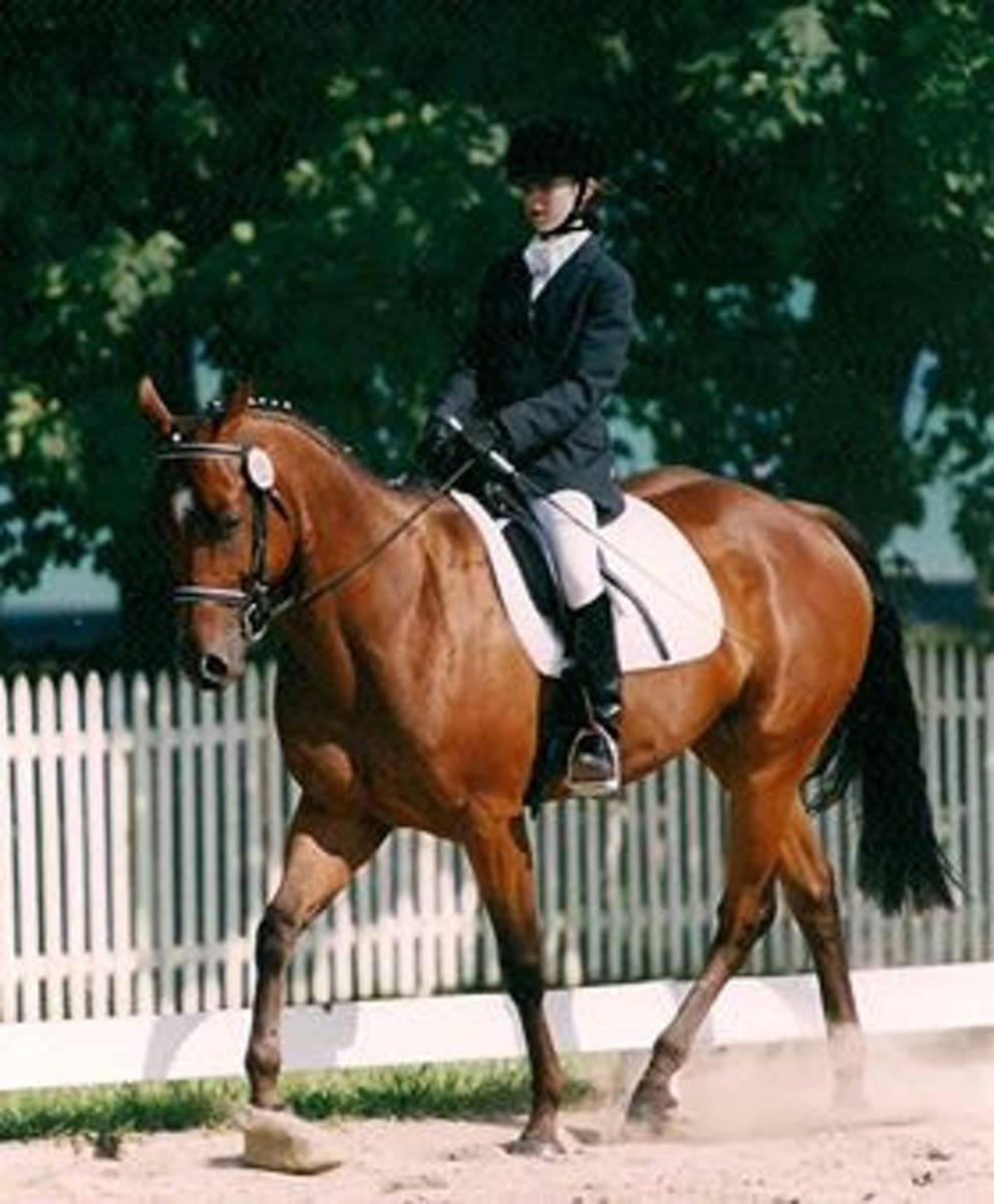 Laura Graves riding in LYDF 1999.JPG