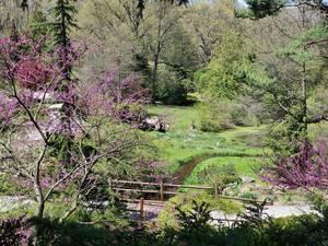 Carousel image 5921792488fdf4949202 laurelwood spring
