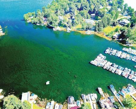 Top story 5a7b9ca7071e957c3ca7 lake mahopac weeds
