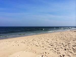 Carousel image 9fe0e646b519e9138443 lbi beach picture