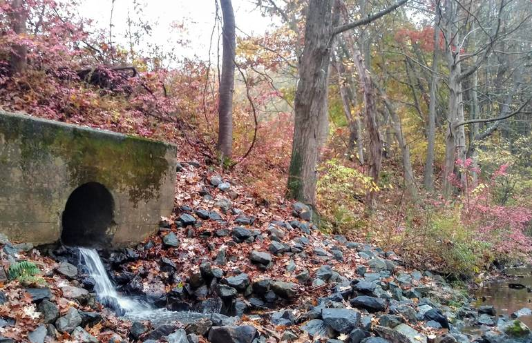 Ledgewood Dam bottom.jpg