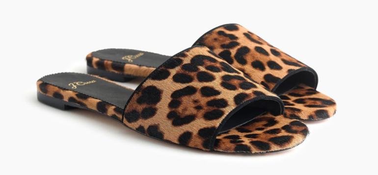 leopardslides-768x356.png