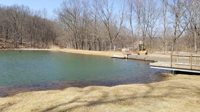 Ledgewood Pond Dam.jpg