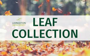 2021 Leaf Collection Program Begins Monday, Oct. 25 in Livingston
