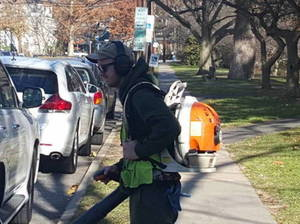 Gas Powered Leaf Blower Man