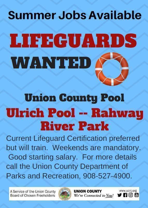 Lifeguard-jobs.jpg