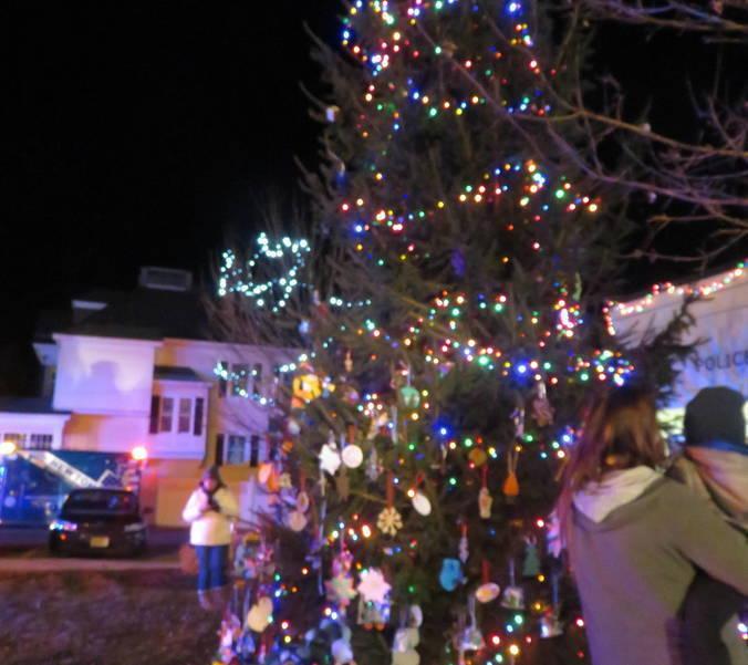 lit tree.jpg