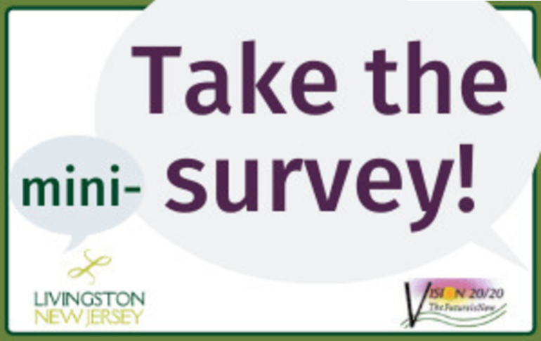 Livingston Mini-Survey.png