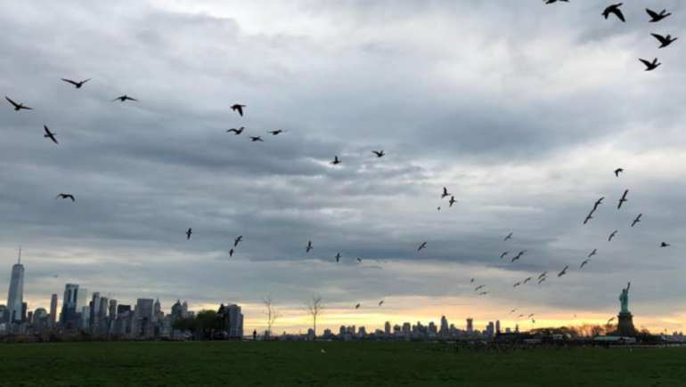 Liberty State Park.png