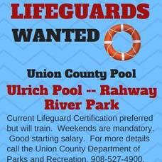 Carousel_image_069c477c3d34d7c87ca6_lifeguard-jobs