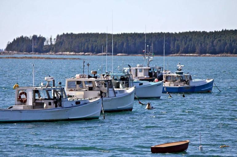Lobster boats off of Mcloons Wharf, Sprucehead Maine.jpg