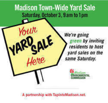 Top story 0048ad7abaee4cb5e72e madison 2020 yard sale