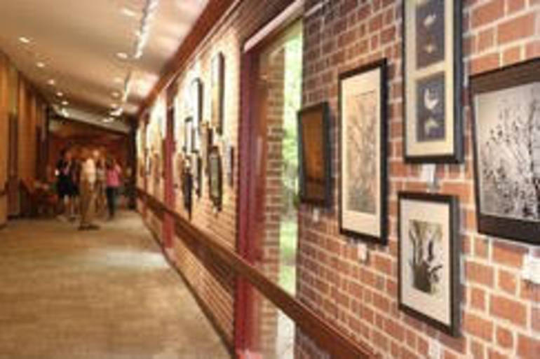 Mercer County Arts Contest.jpg