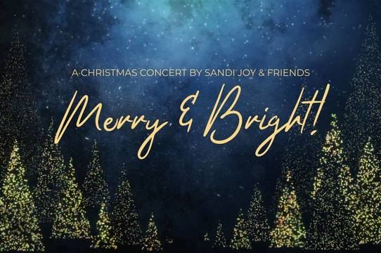 Top story b2c58b65c495a104e7f9 merry   bright logo
