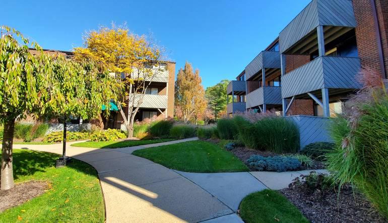 MGC courtyard.jpg