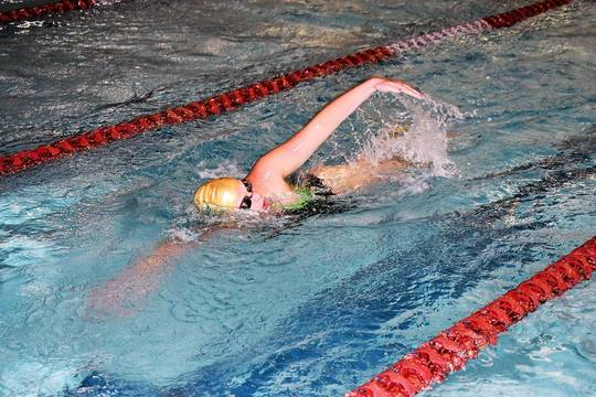 Top story 3016436cc08b9fe935e9 mkhs swimming 03.12122018