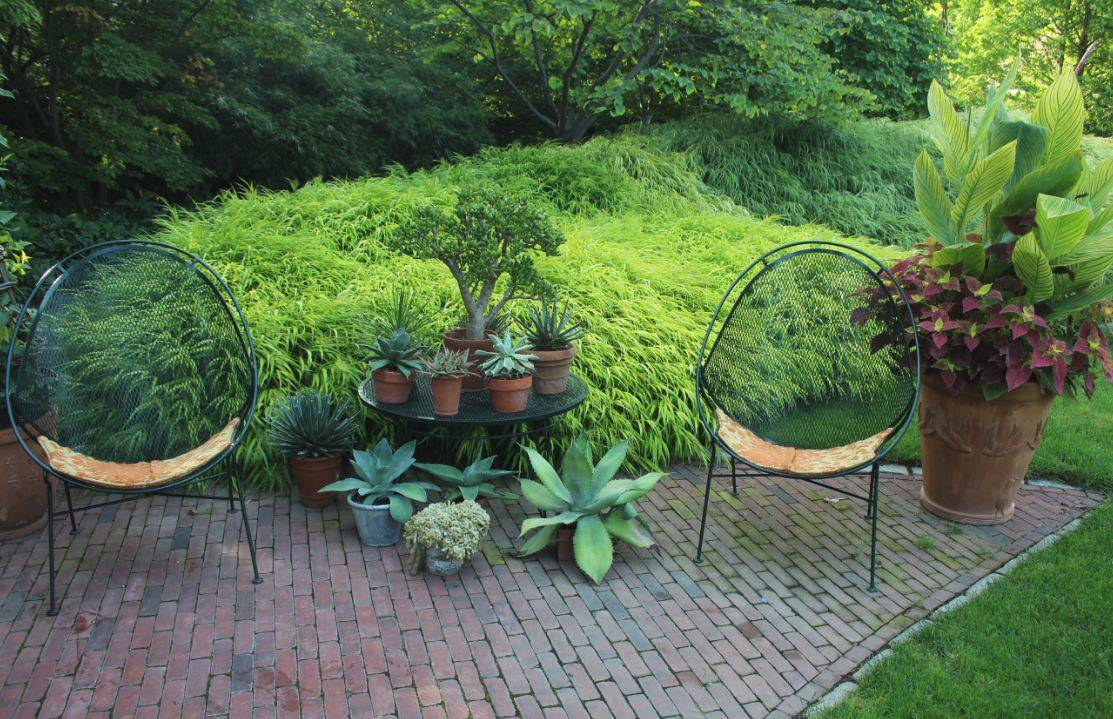 Mountsier Hardie Garden k.JPG