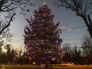 Carousel image 175847ab938d4a3d1926 mountainside christmas tree