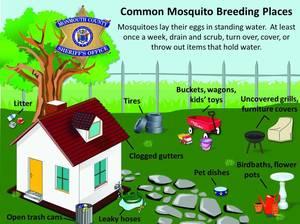 Carousel image 5f17879421a884875bb3 monmouthcountysheriffmosquitos