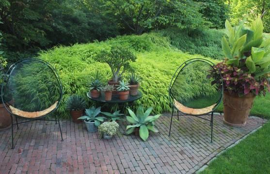 Top story 1b606ba6d9967a35b1e0 mountsier hardie garden k