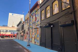 Carousel image 9d3231378f1a902a08a2 murals