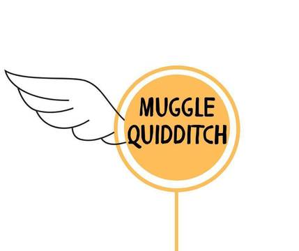 Top story 68f0a54a0983eb0f548d muggle quidditch