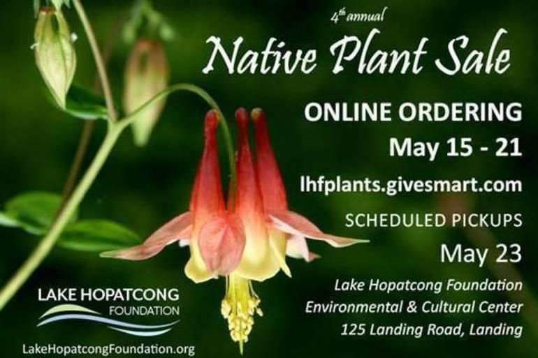 nativeplant.jpg