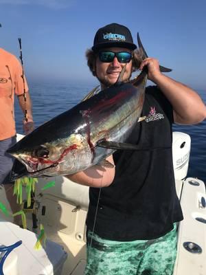 Carousel image e9908f19d1ad71b93cd7 nick 35 yellowfin tuna