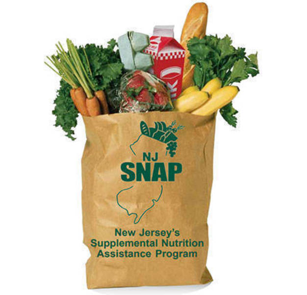 njsnap-bag.jpg