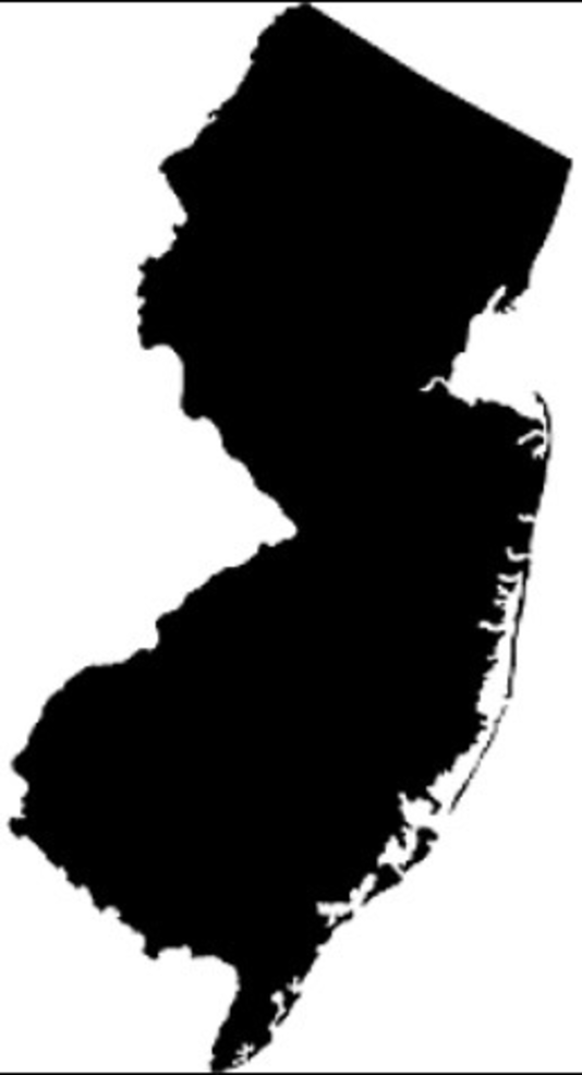 NJ Map - silhouette.png