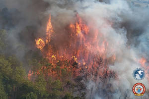 Forest Fire Services Continue To Contain Wildfire