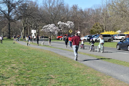 Top story 2174bb682d9d566184b5 peopleenjoyparkfriday