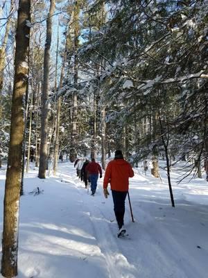 Carousel image dcf045d5f5c9446ebfc5 pfeiffer snowshoe hike