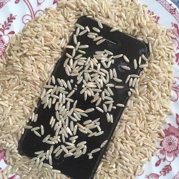 phone rice.jpg