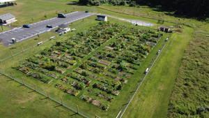 The Randolph Community Garden Continues to Grow