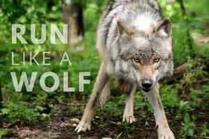 Run Like a Wolf