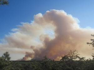 Local Law Enforcement Warns of Brush Fire