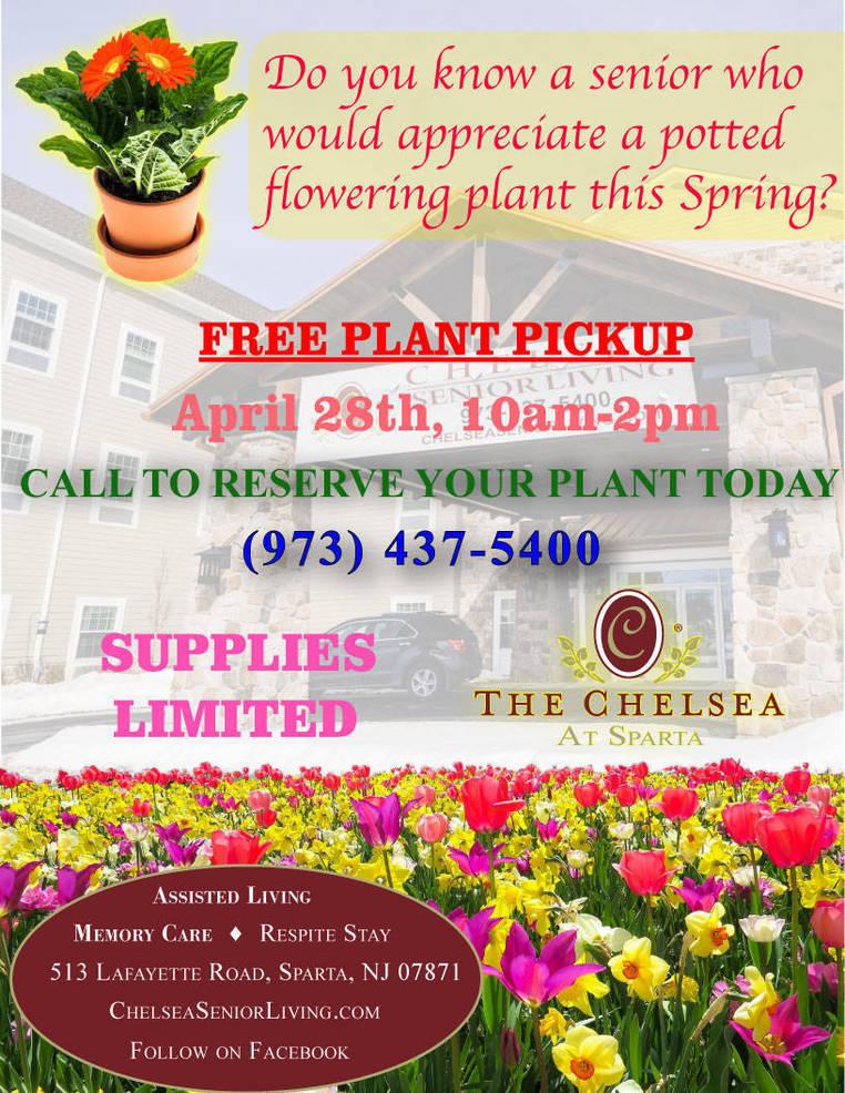 Best crop 3350b6f0a46aa1ddcd1f plant pickup v4