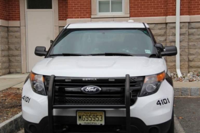 police car  (5).jpg