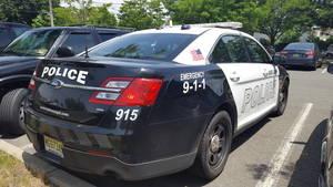 Carousel image dad85279122a31e001e4 police car rear