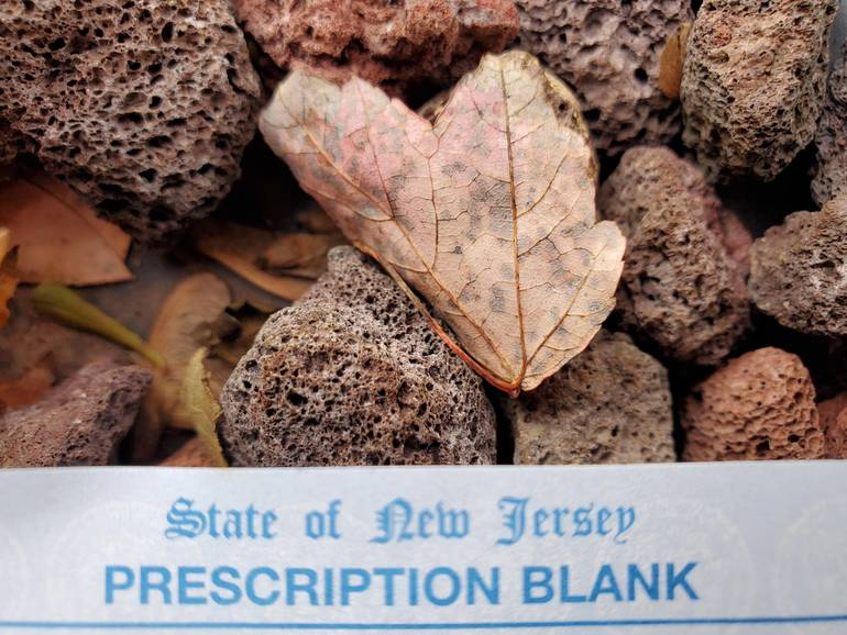 prescription blank.jpg