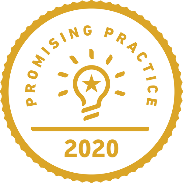 Promising Practices Badge.png