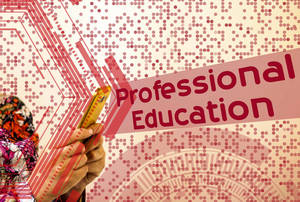 Carousel image 2fec67267b8429e9160e professional education