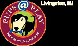 Carousel image 188c561081efad359e76 pupsatplay logo header