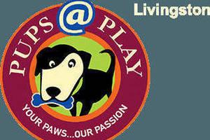 Carousel image 233403fa80870f1b1e37 pupsatplay logo header