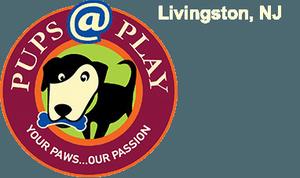 Carousel image 44e93c7cef4f89fd7f51 pupsatplay logo header