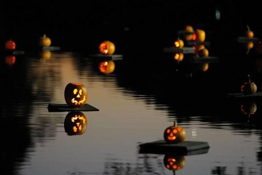 Top story 052db9fc6c350b8eb78b pumpkin sail 1